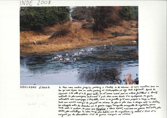 M. Butor©, « Keoladeo Ghana », Inde, 2008.